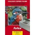 CLP Adhesive P CL-polyester.čirá f/barva